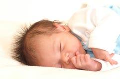 söta drömmar Royaltyfria Bilder