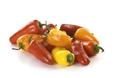 söta färgrika peppar Fotografering för Bildbyråer