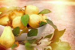 Söta gula päron i den vita bunken arkivbild