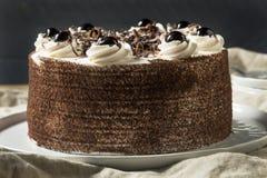 Söta hemlagade svarta Forest Cake royaltyfri bild