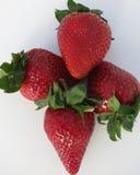 söta jordgubbar Royaltyfria Bilder