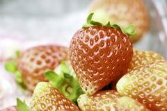 Söta jordgubbeservar för att äta Arkivbild