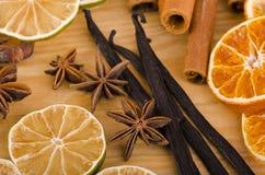 söta kryddor Royaltyfria Bilder