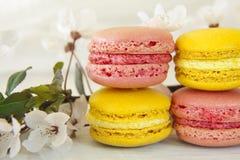 Söta Macarons royaltyfria foton