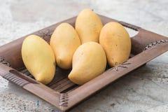 söta mango Fotografering för Bildbyråer