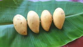 Söta mango på bananbladet Arkivbild