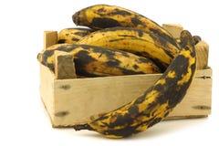 Söta mogna stekheta bananer (plantainbananer) Arkivfoto