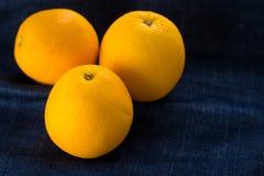 Söta nya apelsiner Royaltyfria Bilder
