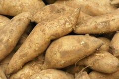 söta potatisar Arkivfoto