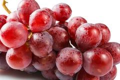 Söta rosa druvor fotografering för bildbyråer