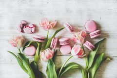 Söta rosa macaronkakor och nya tulpanblommor för vår royaltyfri fotografi