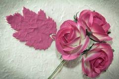 Söta rosor och bladanmärkningen på mullbärsträdet skyler över brister Royaltyfri Fotografi