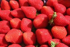 Söta spanska jordgubbar - som är nya och royaltyfri foto