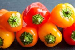 Söta spanska peppar för makrosikt Ljusa röda gula orange grönsaker, grunt djup av fältfotoet royaltyfri bild