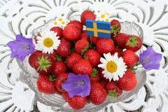 Söta svenska jordgubbar för solstånd Royaltyfri Fotografi