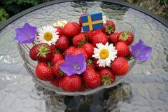 Söta svenska jordgubbar för solstånd Fotografering för Bildbyråer
