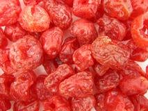Sötade Cranberries som torkas Arkivfoto