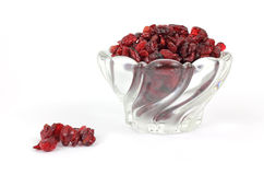 sötade cranberries som torkas Royaltyfri Bild
