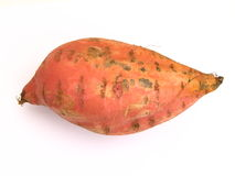 Sötpotatis Ipomoea batatas Royaltyfria Foton