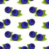 Sött bär som isoleras på vit bakgrund seamless vektor för modell Illustrationen med det indigoblå blåbäret kan användas för affis vektor illustrationer