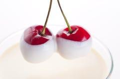 sött Cherry royaltyfri foto