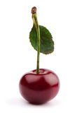 sött Cherry Arkivbilder