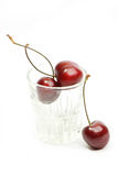 sött Cherryexponeringsglas Royaltyfria Foton