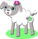 Sött lamm med den spiral blomman Royaltyfria Foton