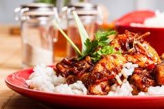 Sött och surt griskött och ris royaltyfria foton