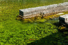 Sötvatten som sammanfogar havet Fotografering för Bildbyråer