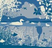 Sötvattens- djurliv royaltyfri illustrationer