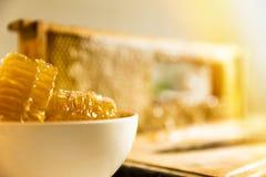 Süße Bienenwabe in der Schüssel Lizenzfreies Stockbild