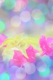Süße Blumenunschärfe gemacht mit Farbfiltern Stockbild