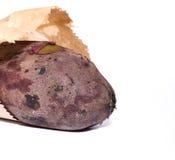 Süße Bratenkartoffel auf weißem Hintergrund Stockbild
