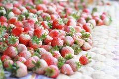 Süße frische Erdbeere Stockbild