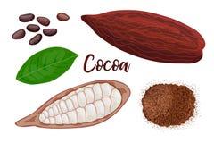 Süße Hülsenfrucht des reifen Kakaos ganz und gebrochen, Blatt, Samen und Kakaopulver auf weißem Hintergrund Auch im corel abgehob stock abbildung