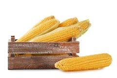 Süße Körner lizenzfreies stockfoto
