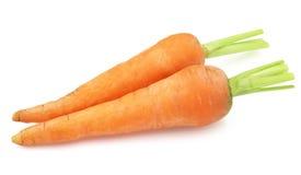 Süße Karotten Stockfotos