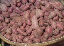 Süße Kartoffel Stockbilder