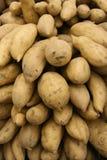 Süße Kartoffeln Stockbild