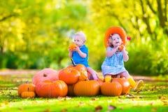 Süße Kinder am Kürbisflecken Stockfotos