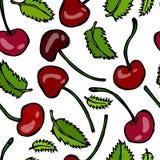Süße Kirsche und tadellose Blätter nahtlos Gekritzel-Art-Vektor-Design, lokalisiert auf weißem Hintergrund Stockbilder