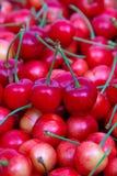 Süße Kirschen Stockbilder