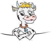 Süße Kuh hinter Vorstand Stockbilder