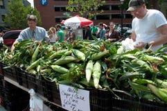Süße Maiskörner am Markt des Landwirts Lizenzfreie Stockfotografie