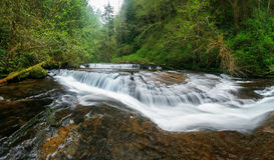 Süße Nebenfluss-Fälle, Oregon Stockfotografie