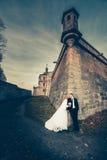 Süße Paar-Hochzeit Lizenzfreies Stockbild