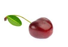 Süße reife Kirsche mit dem Blatt lokalisiert auf weißem Hintergrund Lizenzfreies Stockbild