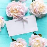 Süße rosa Pfingstrosenblumen und -empty tag auf dem Türkis hölzern Stockfotografie