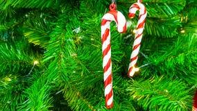 Süße rote und weiße Süßigkeitsstöcke, die an einem Brunch vom grünen künstlichen Plastikweihnachtsbaum hängen lizenzfreies stockbild